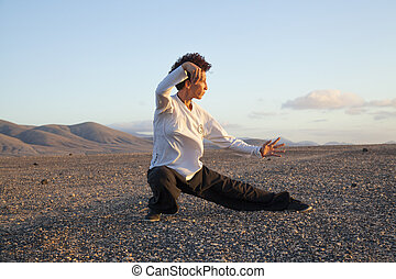Tai chi at sunset - young woamn performs tai chi moves at...