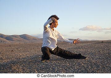 Tai chi at sunset - young woamn performs tai chi moves at...
