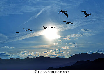 Birds flying away over blue sky background