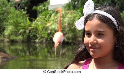 Children Near Flamingos
