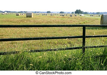 Meadow grasslands farm round bales in Texas - Meadow...