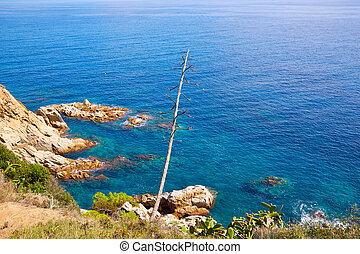 Costa Brava beach Lloret de Mar Catalonia Spain - Costa...