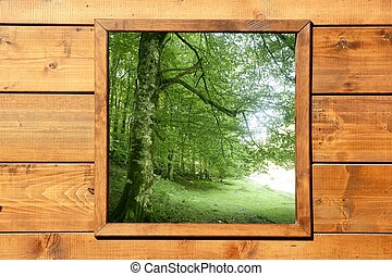 Wooden window jungle green forest view from wood cabin