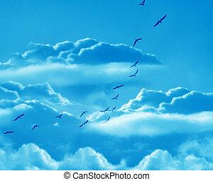 birds - flock of birds in a clear blue sky