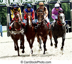 Horse race. - Horse race of the prize Dombai. Hippodrome in...