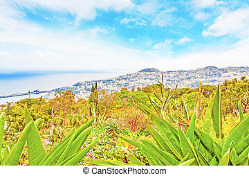Funchal, Madeira - Panoramic view over Funchal, Madeira,...