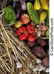 蔬菜, 籃子