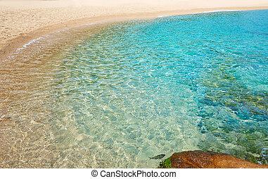 Platja Fenals Beach in Lloret de Mar Costa Brava - Platja...