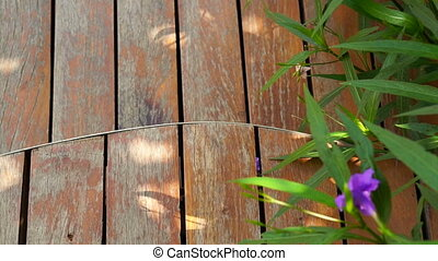 Curved cut wooden deck garden - Video of Curved cut wooden...