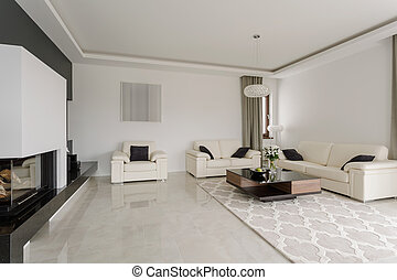Spacious snobbish living room in modern black and white...