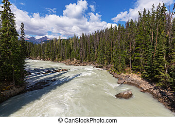 Athabasca river - Scenic views of the Athabasca River...