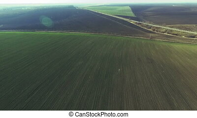 Aerial view of plowed fields and small wheat