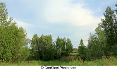 Movement of clouds over the meadow. Syropyatskoe village,...