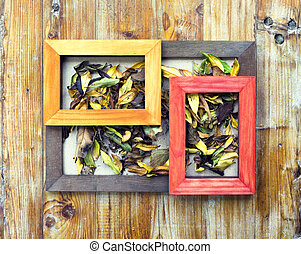 picture frames and flowers and leaves - concept autumn...