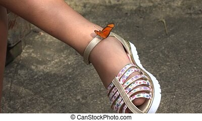 Butterfly on Shoe