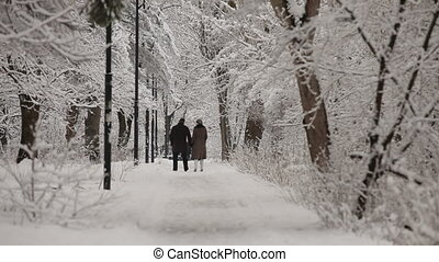 Couple In Love Walking In Winter Park - Rear shot of a happy...
