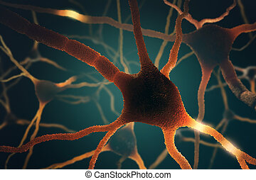 Neurons Concept - Image concept of neurons interconnected in...