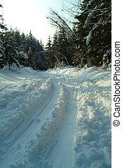 cross-country ski trail