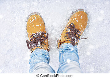 walk in the snow
