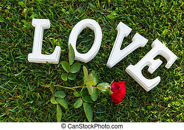 Love sign with rose - Love sign with red rose on green grass...