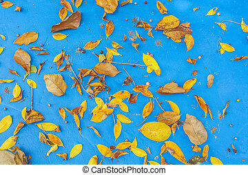 Leaves Falling from a tree on the blue background.