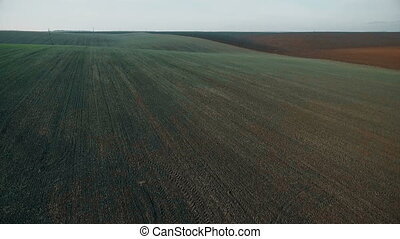 Aerial view of field with wheat Full HD