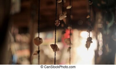 Sea shells on a string swaying at house - Sea shells on a...
