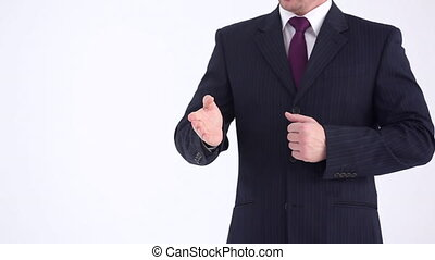 Presentation of the Business Projec - Businessman gesturing...