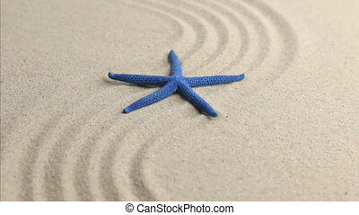 Blue starfish lying on the undulating sand beach. HD