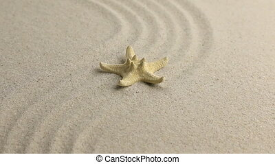 Yellow starfish lying on the undulating sand beach HD