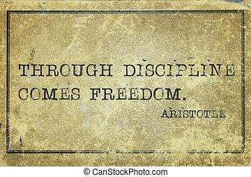 por, disciplina,