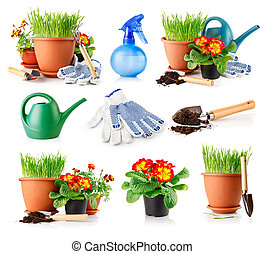 set garden grass and flowers in the pots isolated on white...