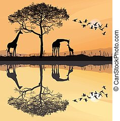 Savana with giraffes - illustration savana with giraffes