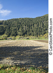 Uncultivated field in Tyrol