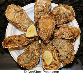 raw oysters served with lemon typical dish of French cuisine