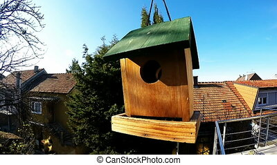 A small tit birds feeding and flying from birdhouse in slow...