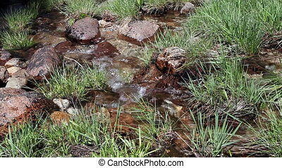 Tight Shot Of Water Flowing - Small Creek Flowing Amid Grass...
