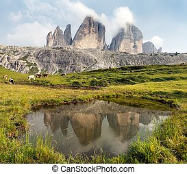 Drei Zinnen or Tre Cime di Lavaredo mirroring in lake,...