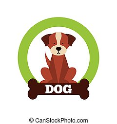 baby animals design, vector illustration eps10 graphic