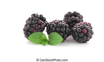 Blackberries with leaves isolated on white background.