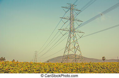High-voltage support of a power line in the field of sunflowers. Vintage filter.