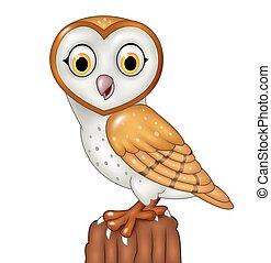Cartoon barn owl posing isolated - Vector illustration of...