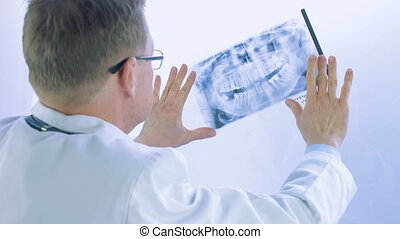 male doctor looking at x-ray - male doctor or dentist...