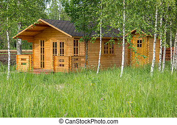 small wooden summerhouse among young birches - small wooden...