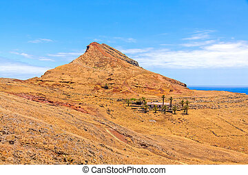Madeira mountain landscape - ranch in desert with palms -...
