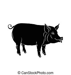 pig black silhouette - Black silhouette of pig is on white...