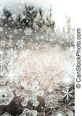 Sparkling frost in a field of wild flowers - Shot of...
