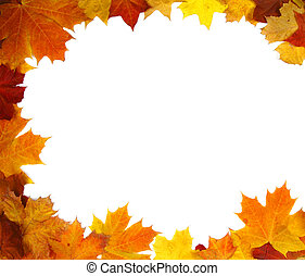 Autumn backdrop - frame of colorful autumn leaves over white