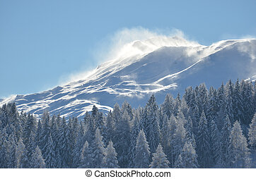 Windblown mountain - Cold winter wind blowing over snow clad...