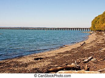 Driftwood on Beach Toward Long Pier